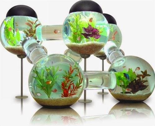 оборудование домашнего аквариум