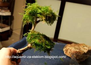 Мир вышивки санкт-петербург интернет 529
