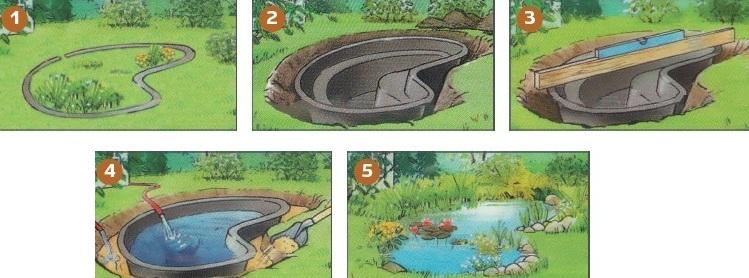 Как правильно сделать водоем в саду